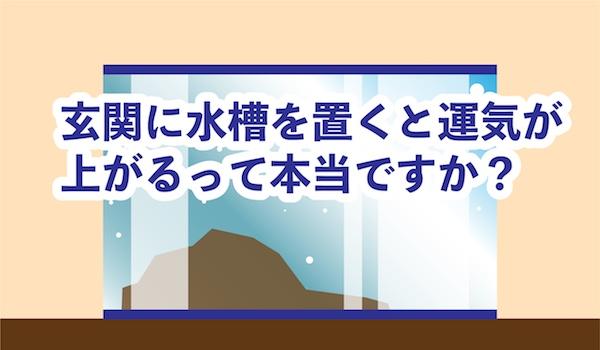 【風水】玄関に水槽を置くと運気が上がる?